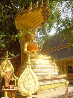 Buddha garden in Vientiane, Laos
