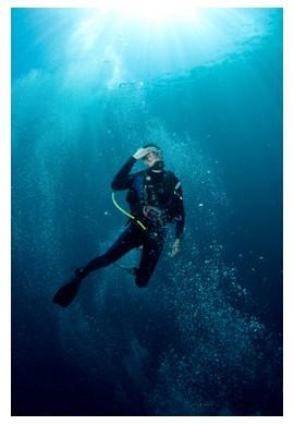 Diving in Sipadan island, Borneo