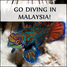 Go diving in Malaysia