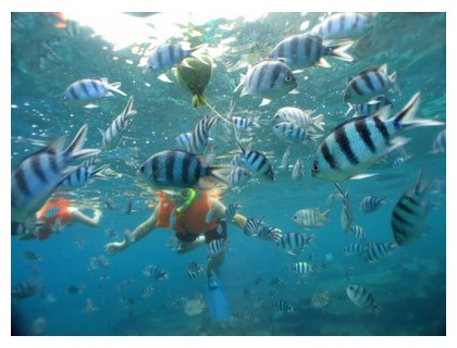 Snorkeling in Malaysia, ©iStockphoto.com/Lim Chee Weng