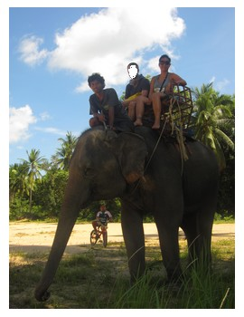 Riding the elephant in Koh Pha Ngan
