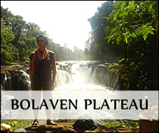 Off-the-beaten track in Bolaven Plateau
