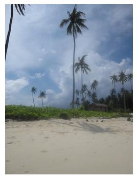 Sibuan island in Borneo