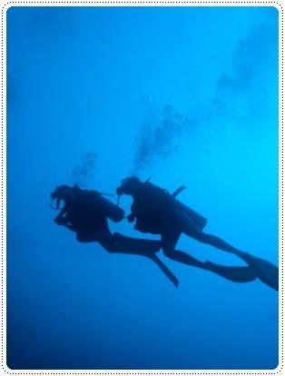 Two people diving together, ©iStockphoto.com/pniesen